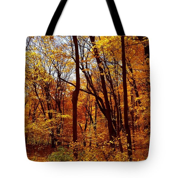Golden Splendor Tote Bag by Jacqueline Athmann