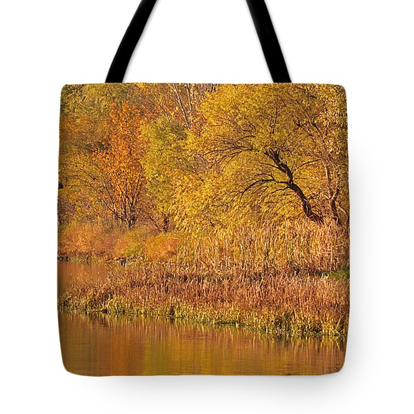 Golden Sunrise Tote Bag by Elizabeth Winter