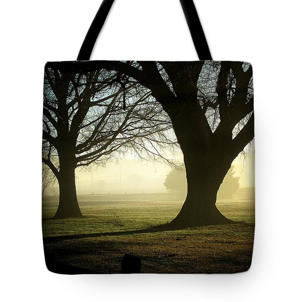 Tote Bag featuring the photograph Golden Sunrise by Greg Simmons
