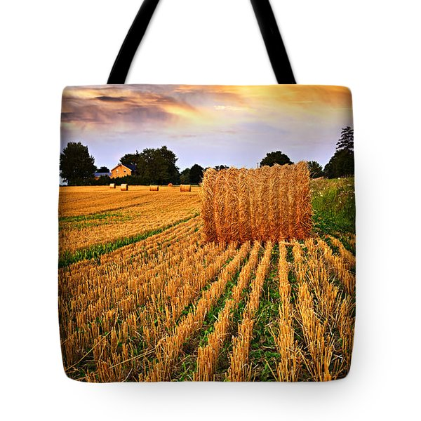 Golden Sunset Over Farm Field In Ontario Tote Bag by Elena Elisseeva
