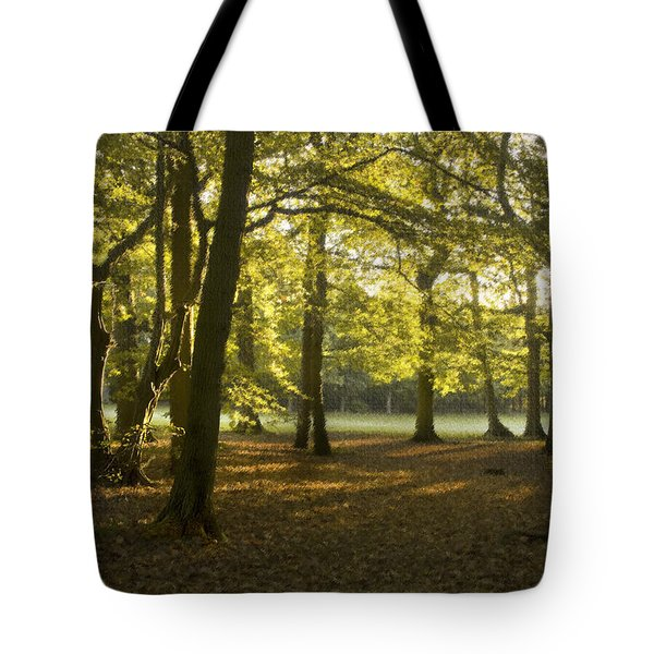 Golden Texture Tote Bag by Trevor Chriss