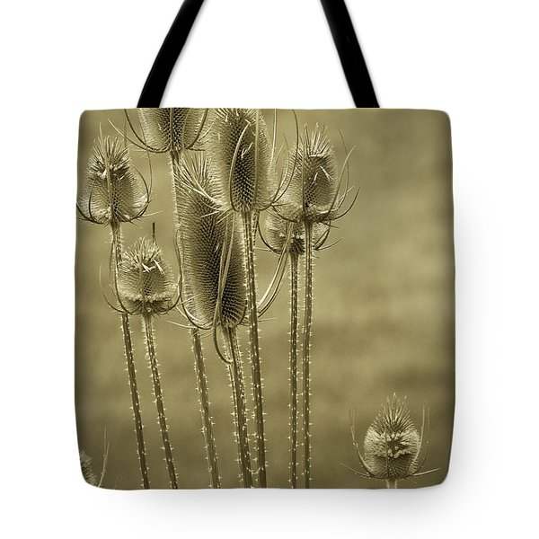 Golden Thistles Tote Bag