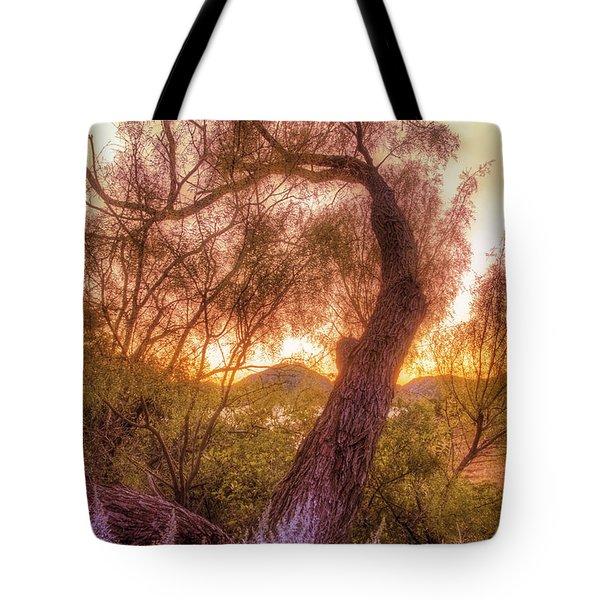 Golden Tree At The Quartz Mountains - Oklahoma Tote Bag