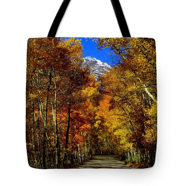Golden Tunnel Tote Bag