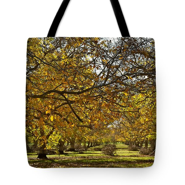 Golden Walnut Orchard Tote Bag