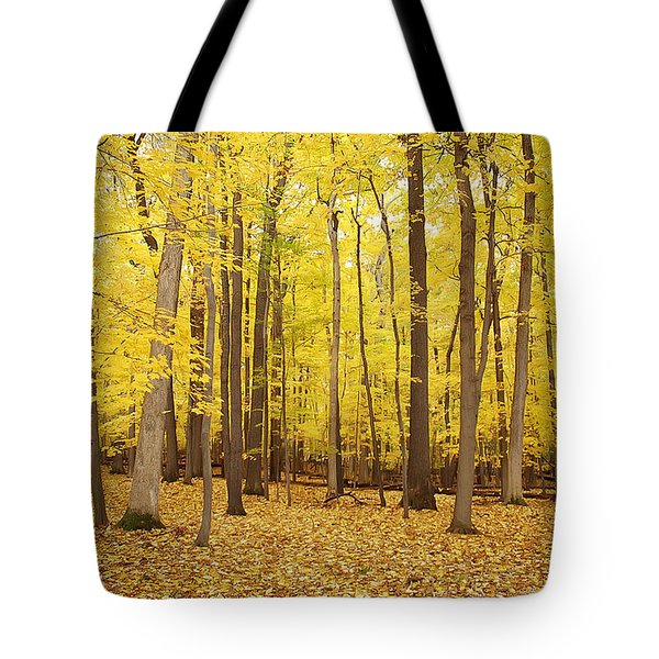 Golden Woods Tote Bag by Aimee L Maher Photography and Art Visit ALMGallerydotcom