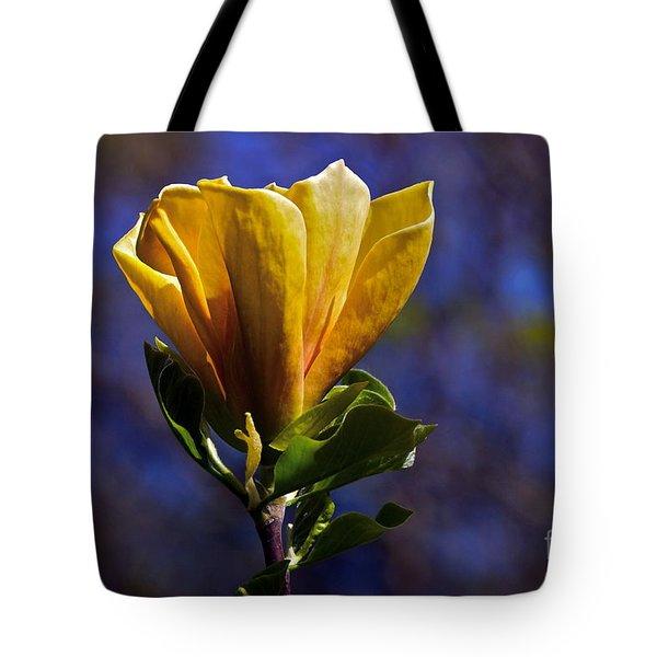Golden Yellow Magnolia Blossom Tote Bag by Byron Varvarigos