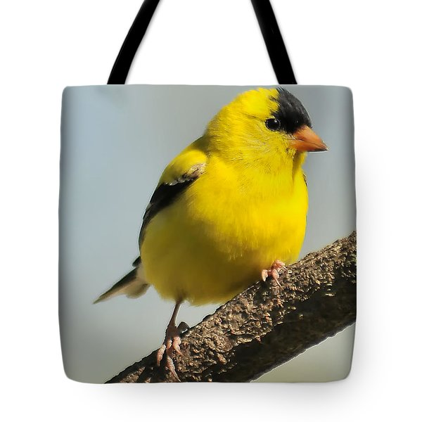 Goldfinch 306 Tote Bag