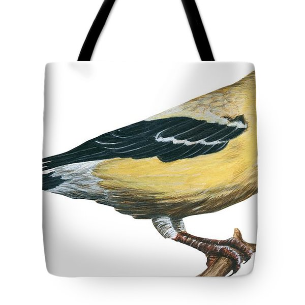 Goldfinch  Tote Bag by Anonymous