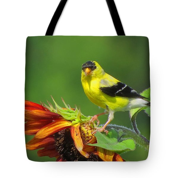 Tote Bag featuring the photograph Goldfinch Pose by Dianne Cowen