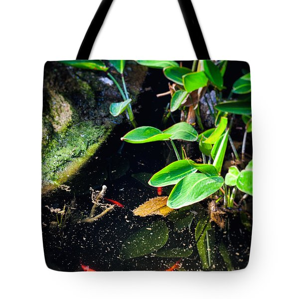 Tote Bag featuring the photograph Goldfish In Pond by Silvia Ganora