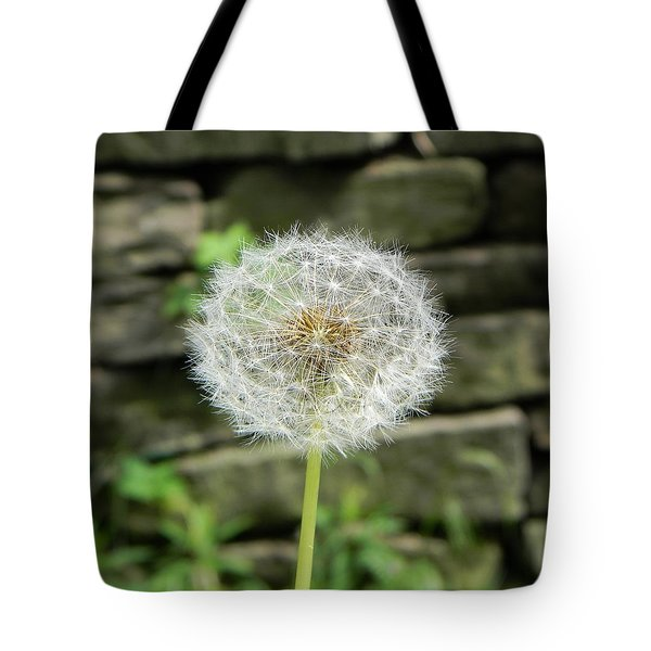 Gone To Seed Tote Bag by Jean Goodwin Brooks