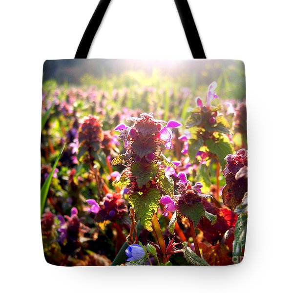 Tote Bag featuring the photograph Good Morning by Nina Ficur Feenan