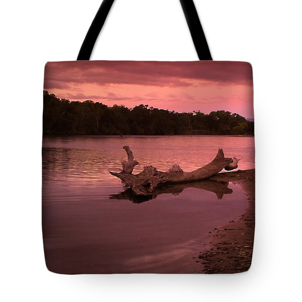 Good Morning Sacramento River Tote Bag by Joyce Dickens