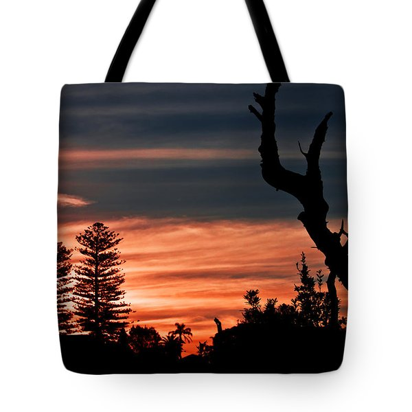 Tote Bag featuring the photograph Good Night Trees by Miroslava Jurcik