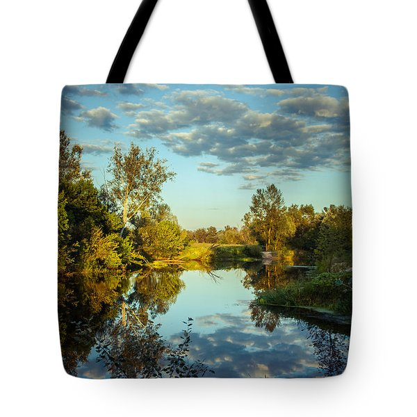 Tote Bag featuring the photograph Goodbye Sunny Day by Dmytro Korol