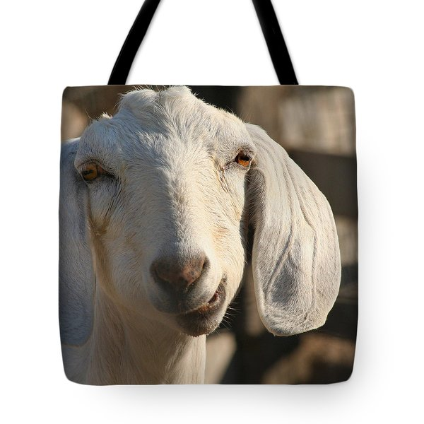 Tote Bag featuring the photograph Goofy Goat by Art Block Collections