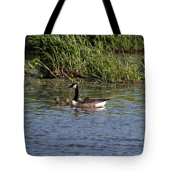 Tote Bag featuring the photograph Goose Family In The Water by Leif Sohlman