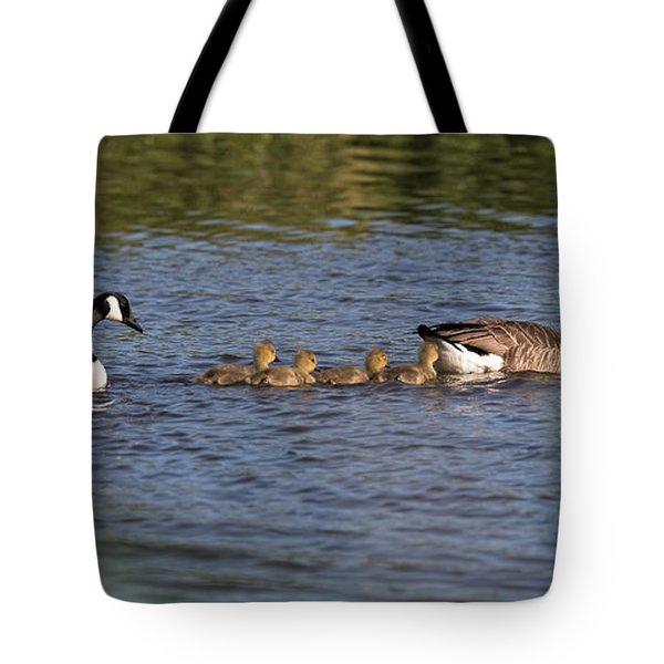 Tote Bag featuring the photograph Goose Family by Leif Sohlman