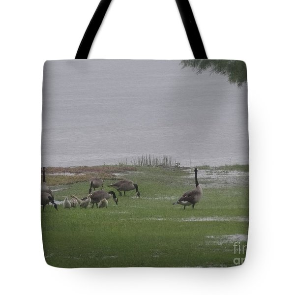 Goose Family Walk Tote Bag by Joseph Baril