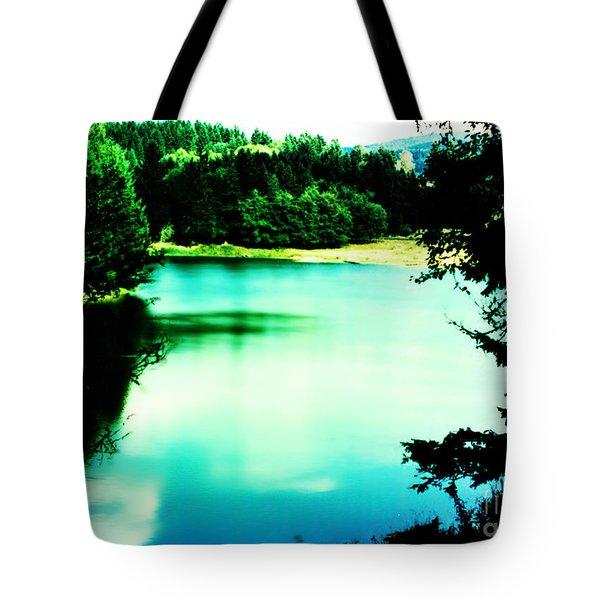 Gorge Waterway Victoria British Columbia Tote Bag by Eddie Eastwood