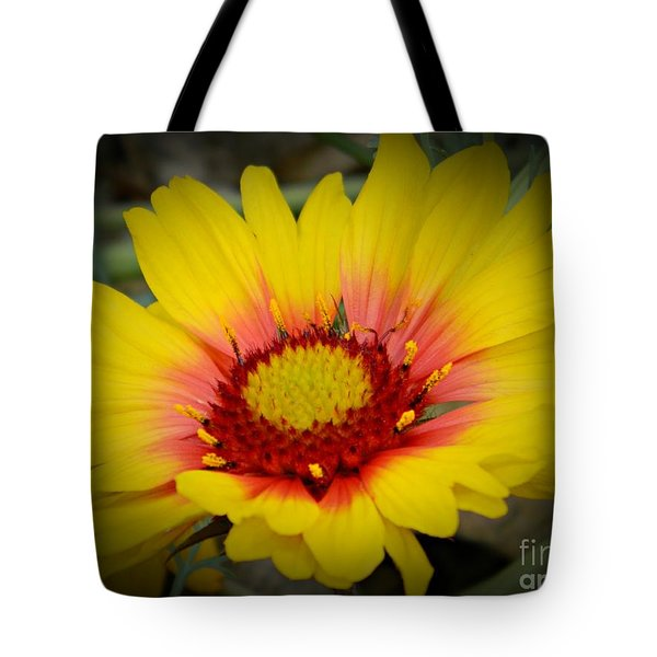 Gorgeous Daisy Tote Bag by Chalet Roome-Rigdon