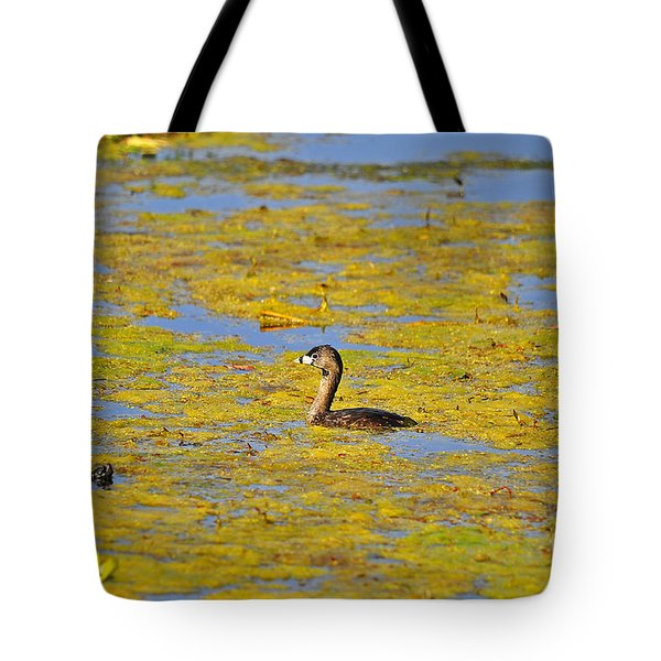 Gorgeous Grebe Tote Bag by Al Powell Photography USA