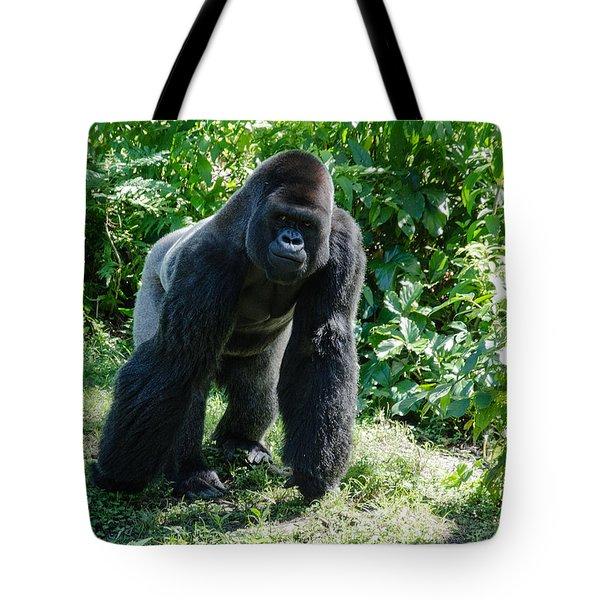 Gorilla In The Midst Tote Bag