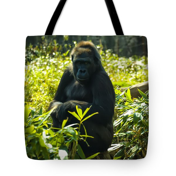Gorilla Sitting On A Stump Tote Bag