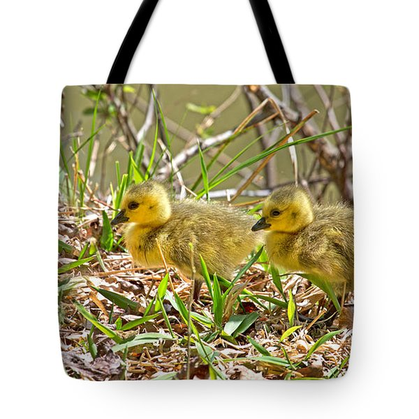 Little Ones Tote Bag