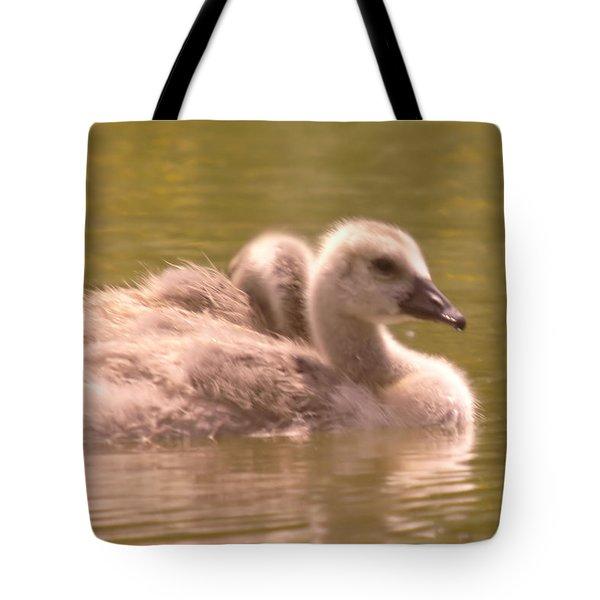 Goslings Tote Bag by Jeff Swan