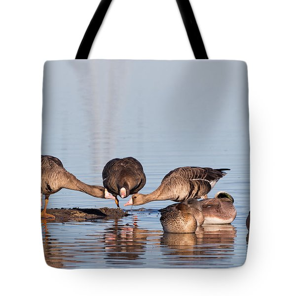 Gossiping Geese Tote Bag