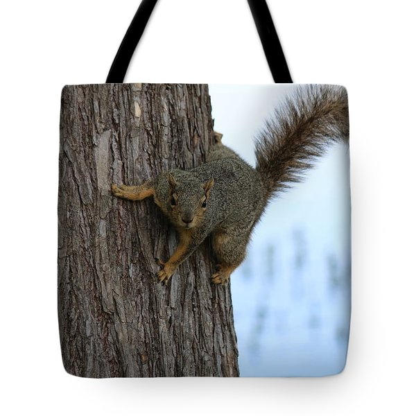 Lookin' For Nuts Tote Bag