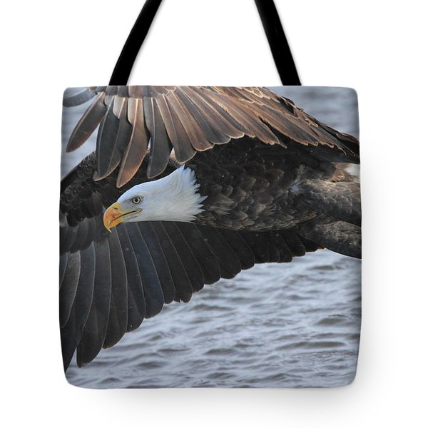 Tote Bag featuring the photograph Got My Eye On You by Coby Cooper