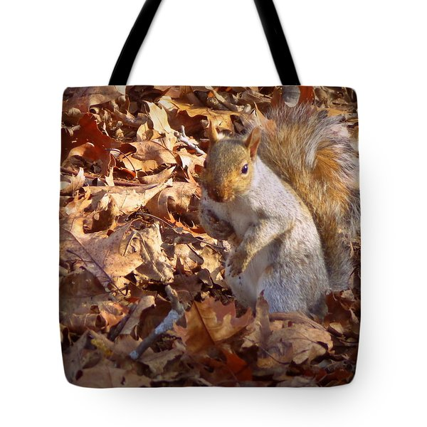 Got Nuts Tote Bag by Joseph Skompski