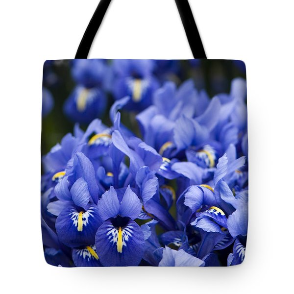 Got The Iris Blues Tote Bag by Anne Gilbert