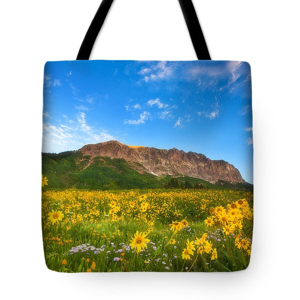 Gothic Meadow Tote Bag by Darren  White