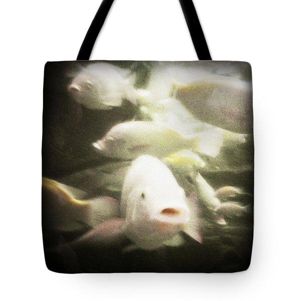 Gouramis Tote Bag by Bradley R Youngberg
