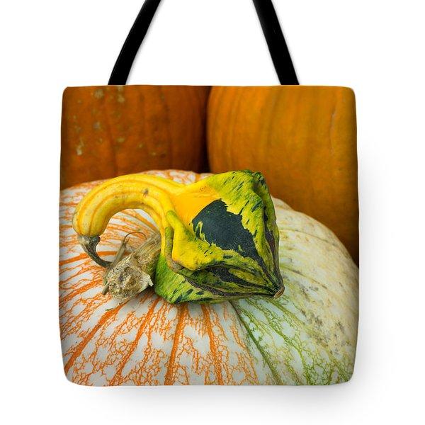 Gourd Pair Tote Bag