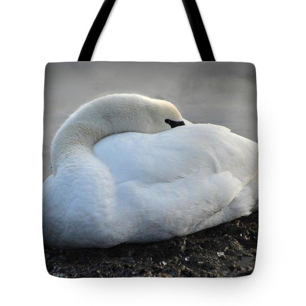 Tote Bag featuring the photograph Grace by Randi Grace Nilsberg