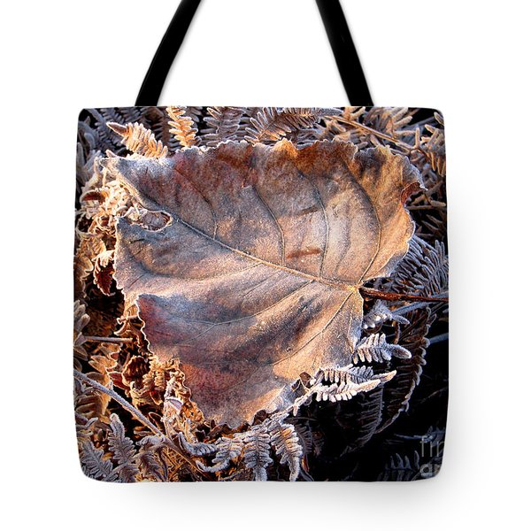 Graced By Frost Tote Bag by Rory Sagner