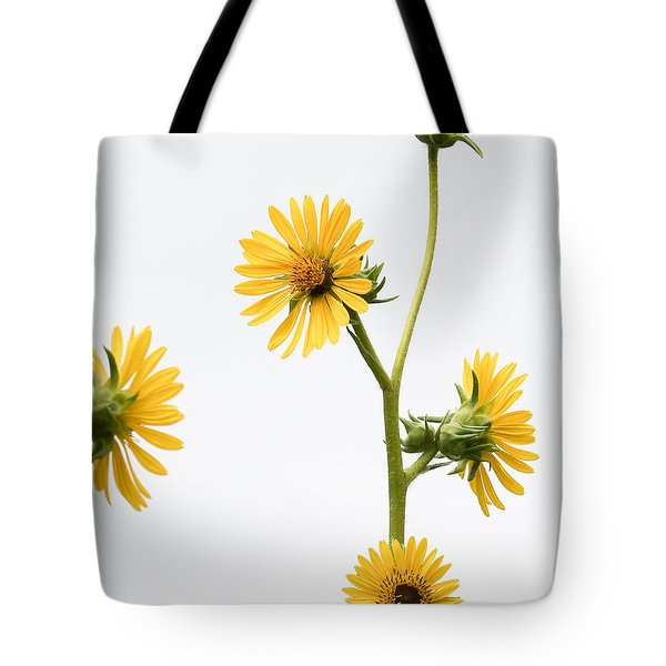 Tote Bag featuring the photograph Graceful Beauty by Anita Oakley