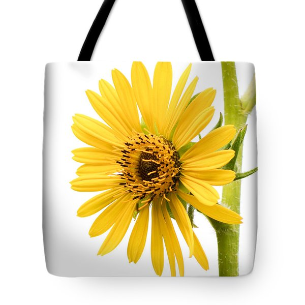 Graceful Beauty II Tote Bag by Anita Oakley