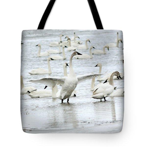 Graceful Tote Bag by Lori Tordsen