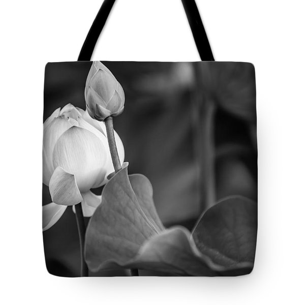 Graceful Lotus. Balck And White. Pamplemousses Botanical Garden. Mauritius Tote Bag by Jenny Rainbow