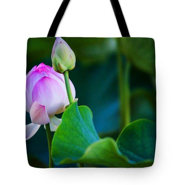 Graceful Lotus. Pamplemousses Botanical Garden. Mauritius Tote Bag