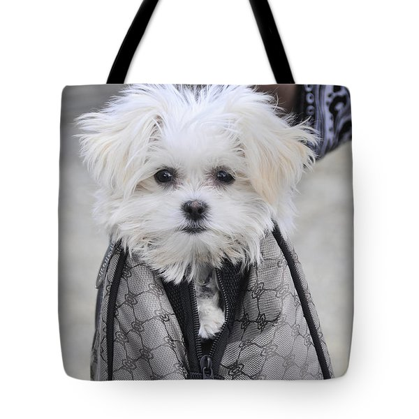 Gracie Hangin' Out Tote Bag