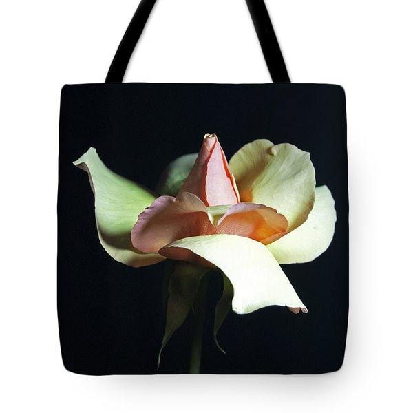 Tote Bag featuring the photograph Gracious Gratitude by Elsa Marie Santoro