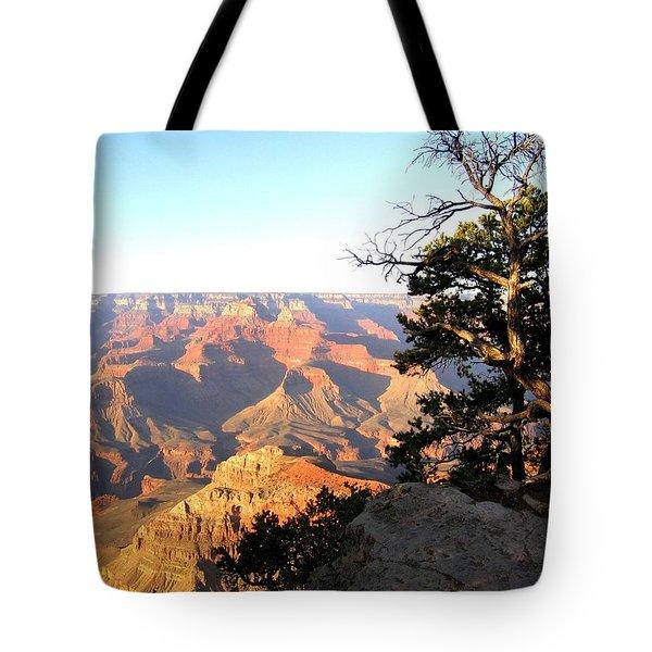 Grand Canyon 63 Tote Bag