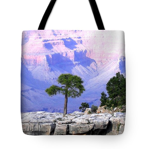 Grand Canyon 73 Tote Bag by Will Borden
